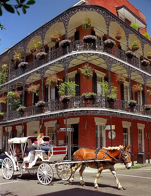 Labor Day Campsite Planning in New Orleans
